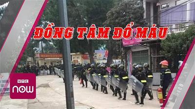 DongTam-domau